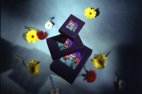 1997_donna packs